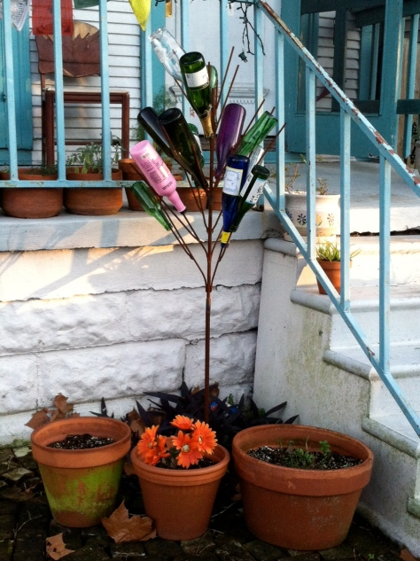 My friend's neighbor's Bottle Tree.